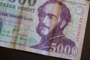 Übersetzungen Finanztexte